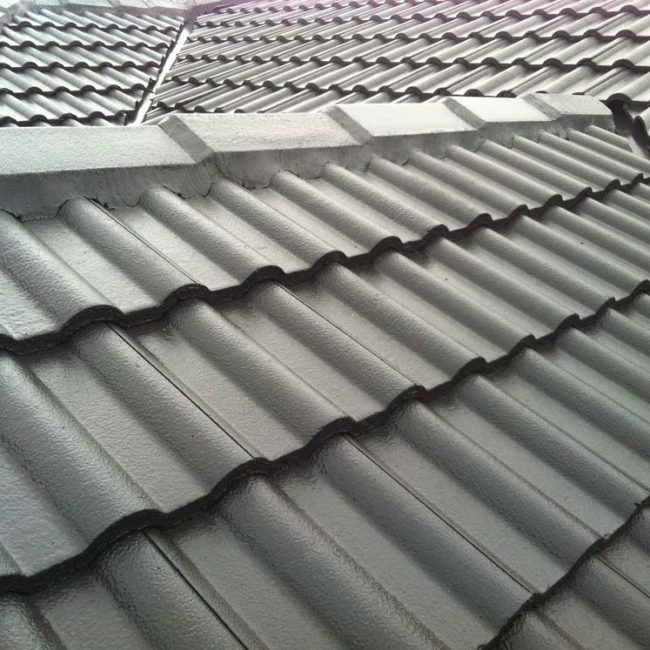 Roof & Render SA Roof Restoration Experts